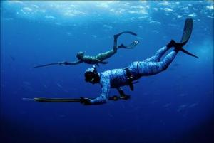 The Belize Fisheries Department has legislated a ban in spear fishing in all Marine Reserves