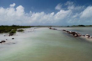 The developers have started dredging in the area without any proper permits or public consultation